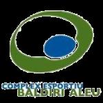 baldiri_aleu
